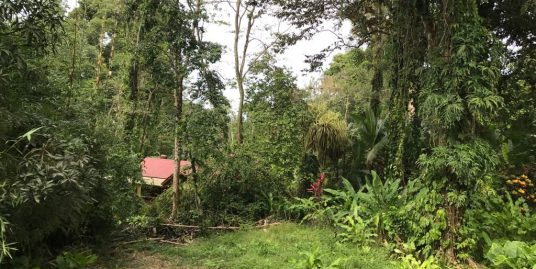 Lot in Playa Chiquita with Old House included