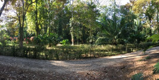 1.25 Acre Lot-Playa Negra Fire Sale