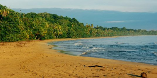 Manzanillo beach Front Causuran Property 2Ha
