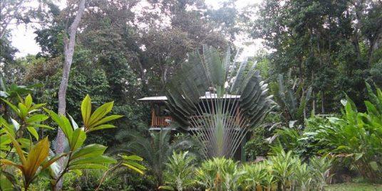 Casa Early Bird, manzanillo beach Front House